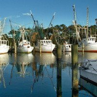 Fishing boats are docked at Harkers Island.  (Photo by Carolyn Temple, Coastal Image Photography)